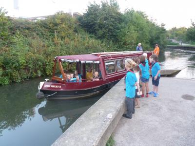 Beavers standing on canalside