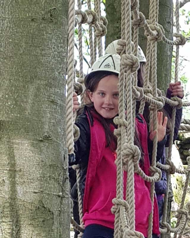 scouts summer camp climbing trees