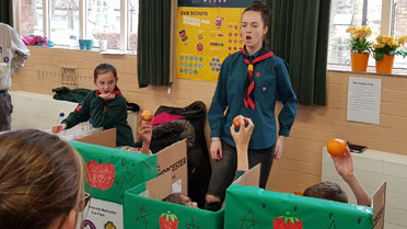 scouts fundraising activities